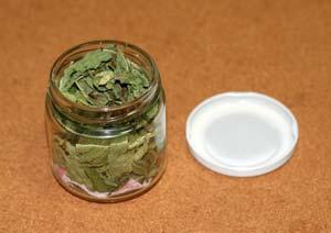 乾燥したスペアミントの葉を瓶詰で保存する