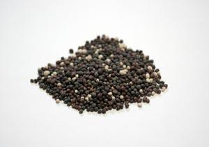 バラの固形肥料参考写真