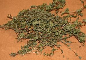 乾燥させたペパーミントの葉