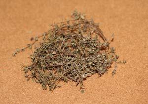 コモンタイムの葉を乾燥させる